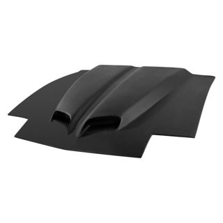 Picture of Mussle Car Sport Hood